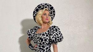 Verrückt: Fans glauben, dass Katy Perry wieder schwanger ist