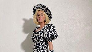 Mit diesen Problemchen hat Neu-Mama Katy Perry zu kämpfen