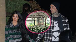 Kourtney K. wird 42: Travis Barker schickt Blumenarrangement