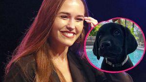 Wendlers Laura feiert Insta-Comeback – mit Hundenachwuchs!