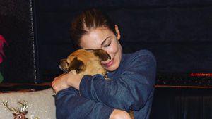 Von Kojote zerfleischt: LeAnn Rimes trauert um ihren Hund