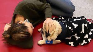 Mandy Capristo emotional: Ihr Hund musste operiert werden