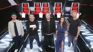 """Fans lieben """"The Voice""""! Wer ist eigentlich der beste Juror?"""