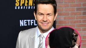 Knackig! Mark Wahlberg zeigt Muckis und blanken Hintern