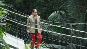 Seht hier: Martins Abgang aus dem Dschungelcamp