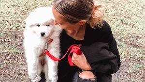 Neues (Fell)baby: Alessandra Meyer-Wölden hat Nachwuchs