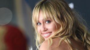 Bulldogge mit Namen Kate Moss: Miley hat einen neuen Hund