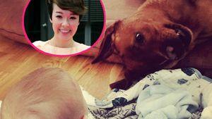 Tierische Freundschaft: Nela Lees Baby hat Hunde-Beschützer!