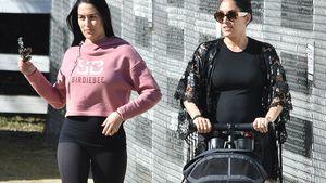 Absichtlich gemeinsam schwanger? Bella-Twins sind genervt