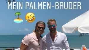 Rosenbrüder-Diss? BiP-Paul & Christian wollen Palmen-Tattoo