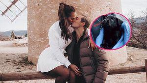 Süß! Henrik Stoltenberg und seine Paulina sind Hundeeltern