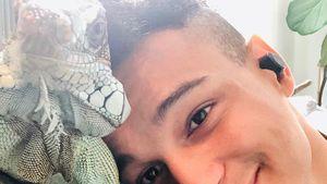 """""""Blut in der Lunge"""": Prince Damien trauert um seinen Leguan"""