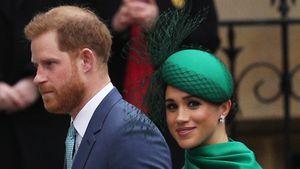 Planen Prinz Harry und Meghan gerade ein Hollywood-Projekt?