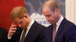 William und Harry haben sich lange vor Megxit gestritten