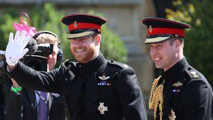 Weiteres Royal-Buch untersucht Harry und Williams Beziehung