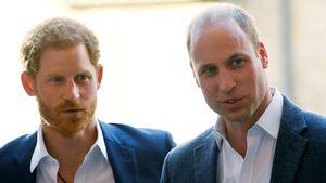 Gerüchte falsch? Prinz Harry hat gutes Verhältnis zu William