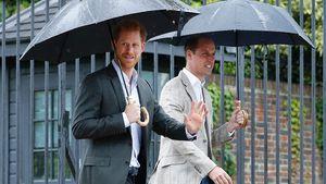 Prinz Harry: Ist er rebellisch, weil er der zweite Sohn ist?