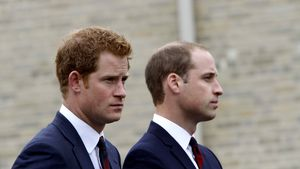 Prinz Harry und Prinz William bei einem Charity-Event in Tidworth