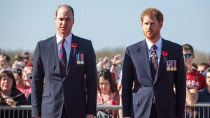 William hat keinen: Wird Prinz Harry einen Ehering tragen?