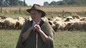 Seine Schafe wollen keinen Sex: Schäfer Heinrich in Geldnot!