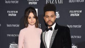 Im Guten getrennt: Selena Gomez & The Weeknd noch Freunde!