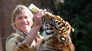 "Heute ist ""Crocodile Hunter"" Steve Irwins zwölfter Todestag!"