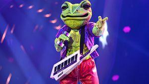 """Tatsächlich! Wigald Boning ist """"The Masked Singer""""-Frosch"""