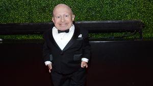 "Mini-Me und ""Harry Potter""-Kobold: Verne Troyer ist tot!"