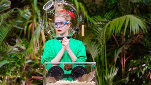 Danni-Gedenk-Challenge: So hart wird die Dschungelshow heute