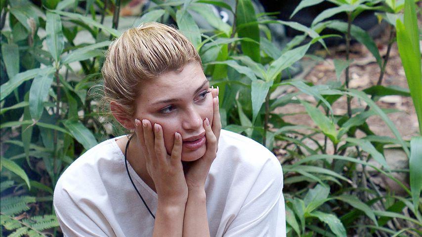 """""""Was kann die eigentlich?"""": Netz-Hate für Dschungel-Giuliana"""