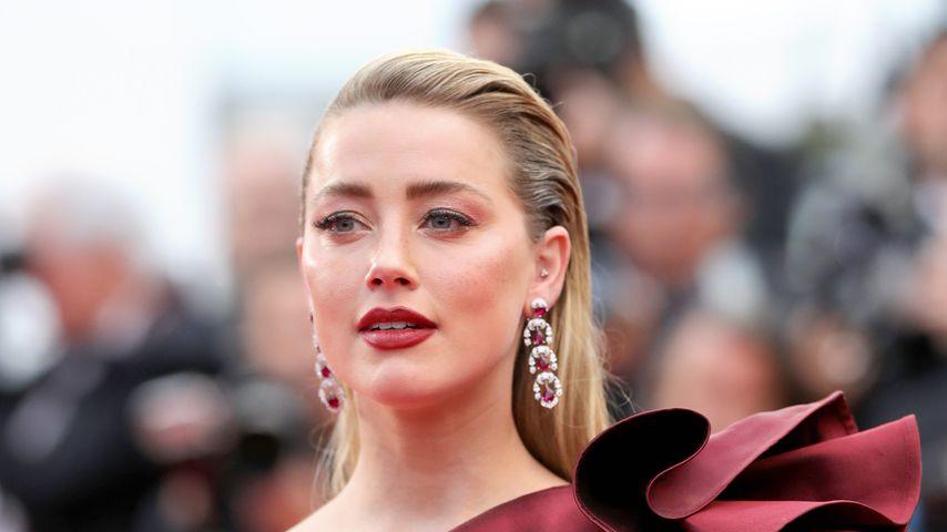 """Amber Heard bei einem Screening von """"Pain And Glory"""""""