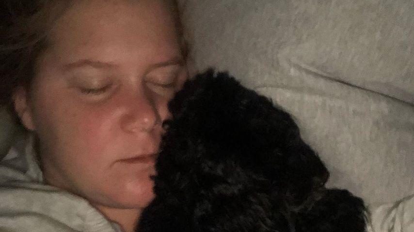 Amy Schumer mit ihrem Hund Tati, 2019