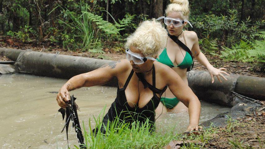 Gefahr? Dschungel-Patricia sauer über Gagen-Gate