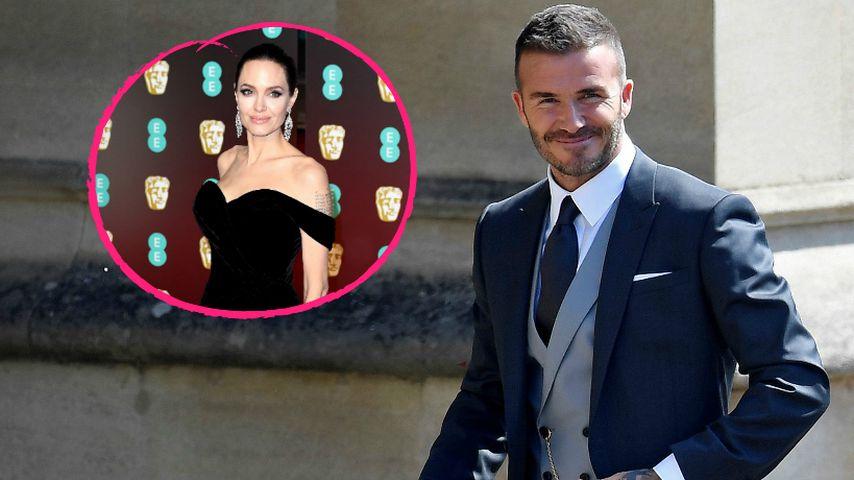 Irre Briten-Wette: Datet David Beckham bald Angelina Jolie?
