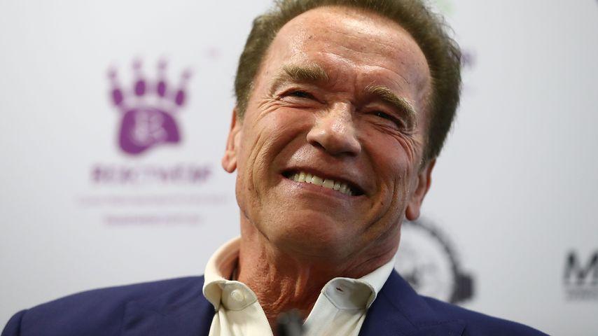 Arnold Schwarzenegger bei einer Pressekonferenz
