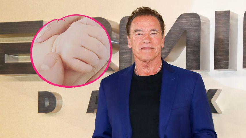 Arnold Schwarzenegger fühlt sich in seiner Opa-Rolle wohl!