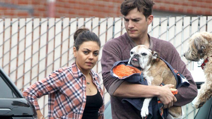Für Wyatt: Mila & Ashton Kutcher bei der Nachbarschaftswache