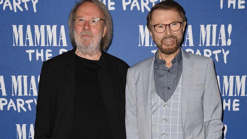 Benny Andersson und Björn Ulvaeus, Musiker