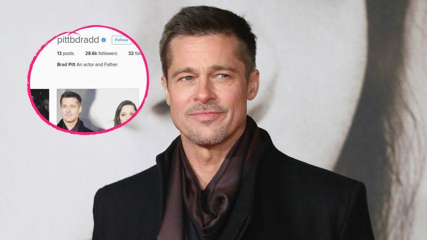 Account aufgetaucht: Ist Neu-Single Brad Pitt bei Instagram?