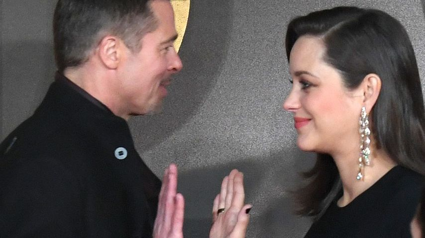 "Brad Pitt und Marion Cotillard beim High-Five auf der ""Allied""-Premiere in London"