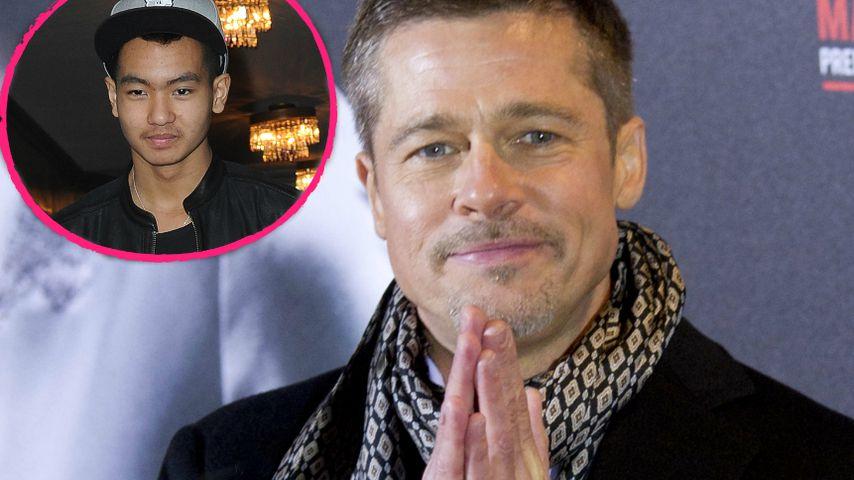 Im Interview: Entschuldigt sich Brad Pitt hier bei Maddox?