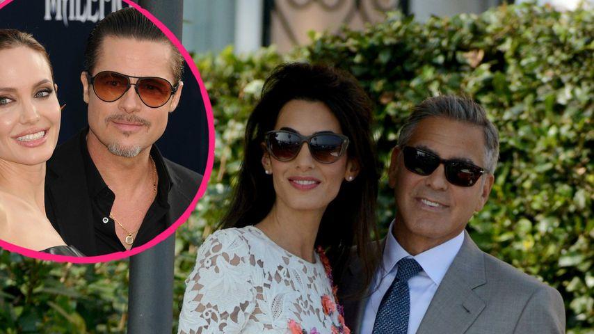 Vermisst! Schwänzten Brangelina Clooneys Hochzeit?
