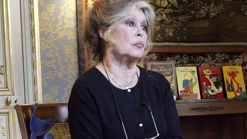 Brigitte Bardot bei einem Event in Paris im Mai 2006