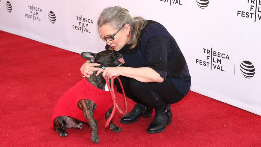 Gary und Carrie Fisher beim Tribeca Film Festival in New York City
