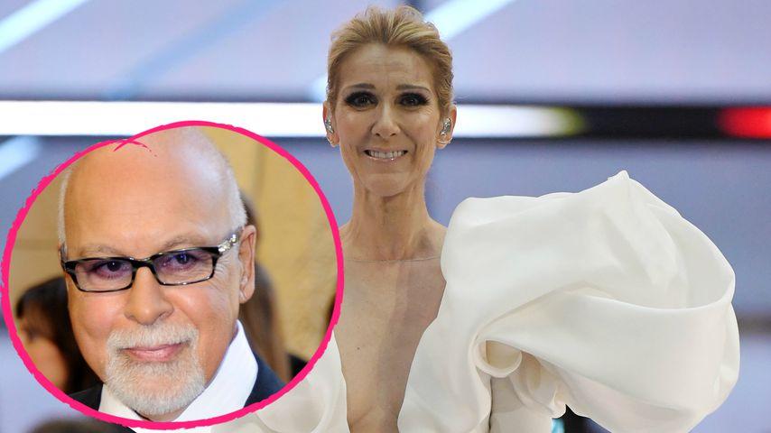"""Céline Dion: """"René wacht jeden Tag über mich!"""""""