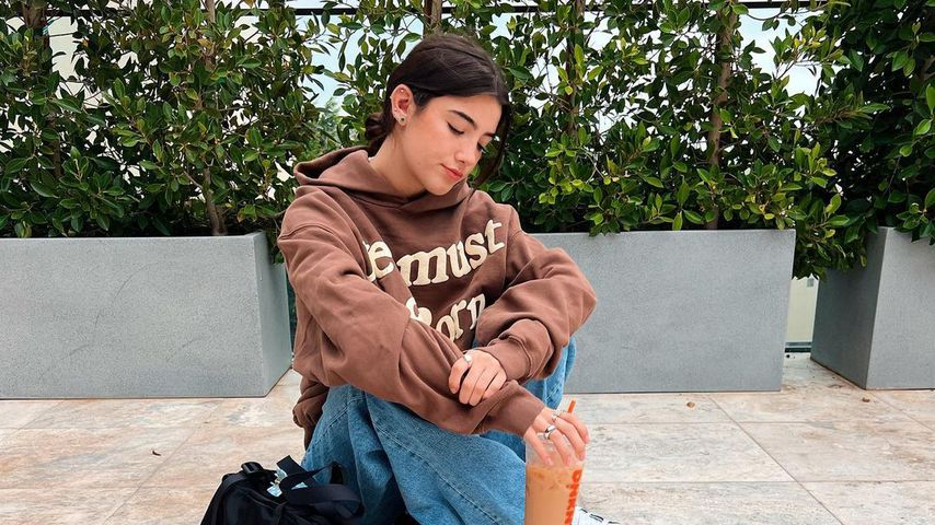 Charli D'Amelio, Social-Media-Star