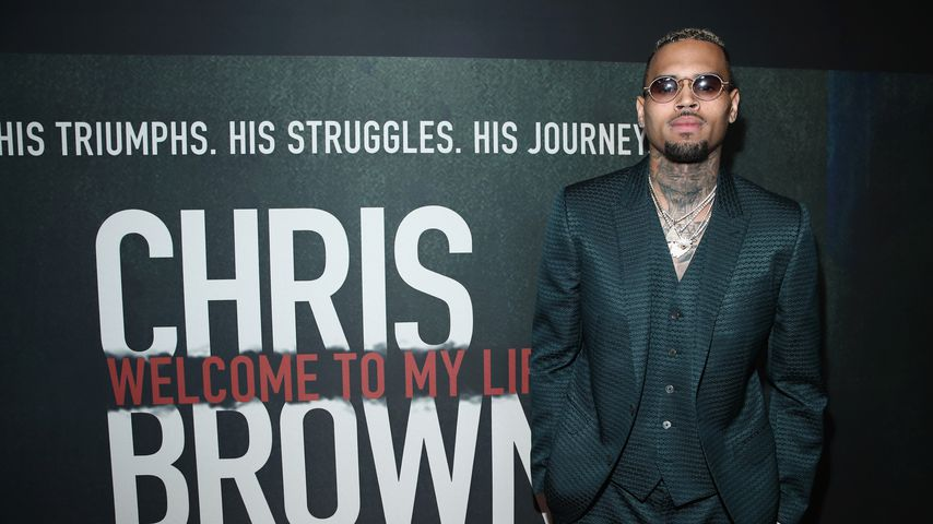 Chris Brown, Musiker