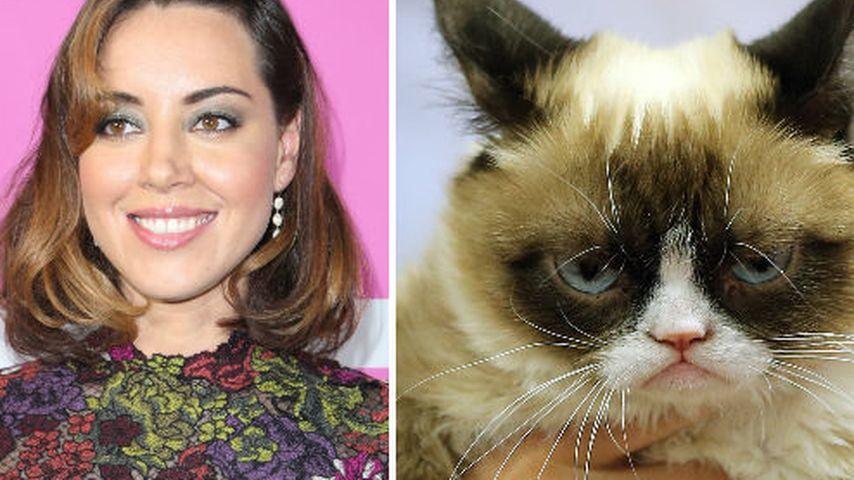 Grumpy Cat und Aubrey Plaza
