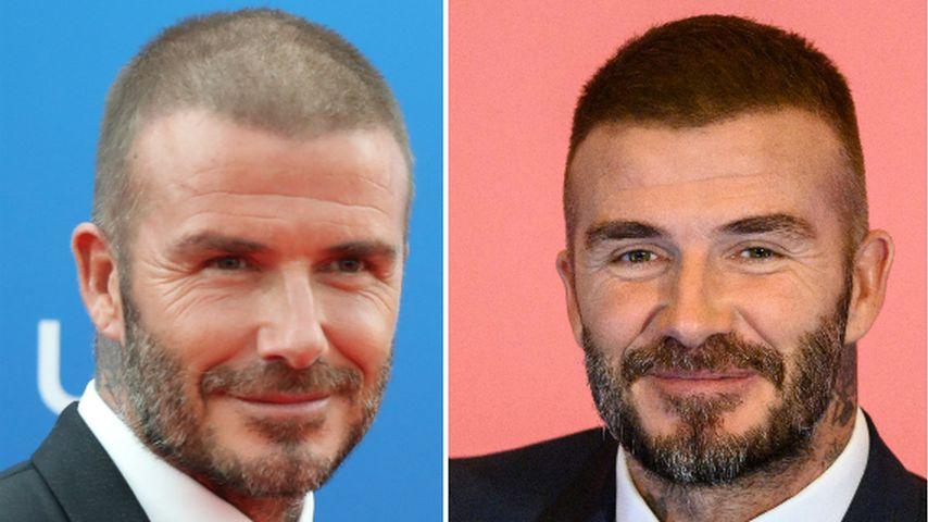 Plötzliche Haardichte: Hat David Beckham etwa nachgeholfen?