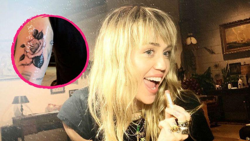 Nächstes Liebes-Tattoo? Miley Cyrus trägt jetzt eine Rose